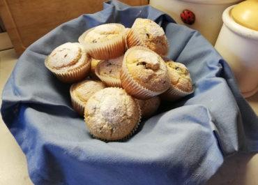 Muffin allo Yogurt con semola di grano duro 'Puntara'